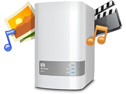 WD Personal Cloud Data Recovery Services