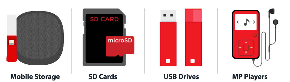 SD Cards and Flash Drives Data Recovery