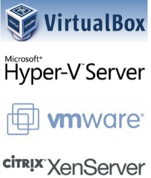 Virtualization Infrastructure Data Recovery Services